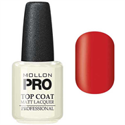 Top Coat - Matt Lacquer